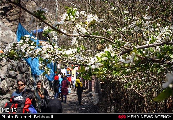 دربند تهران - اجاره خودرو -اجاره ماشین