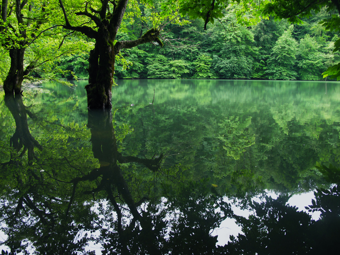 دریاچه الندان ساری - اجاره خودرو - اجاره ماشین